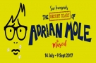 #StageFaves Dean Chisnall, Kelly Price, Gay Soper and more cast in Adrian Mole the Musical