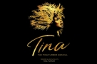 Simply the Best? Tina Turner musical premieres at Aldwych in April 2018