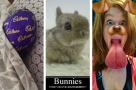 Get Social: 9 of the sweetest Easter tweet treats from #StageFaves